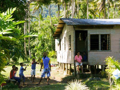 Cacao Farmers - Fijiana Cacao plantation
